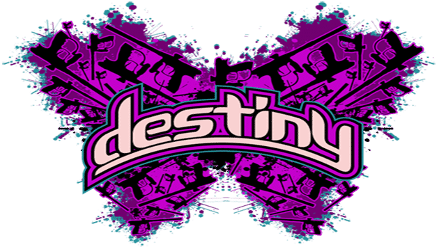 Team Destiny and Valken Join Forces for 2013